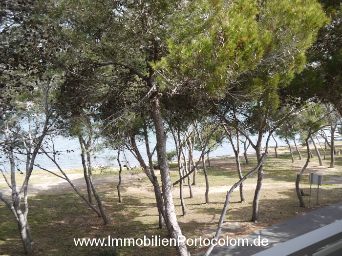 Apartment Portocolom first line view 7416